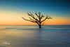 Standing Alone (Avisek Choudhury) Tags: nikond800 nikon1635mm avisekchoudhury avisekchoudhuryphotography acratechballhead gitzo sunrise edistobeach edistoisland southcarolina