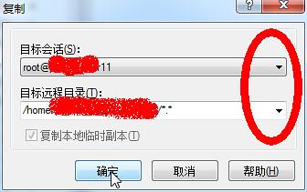 WinSCP远程复制对话框