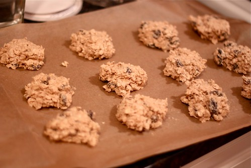 European-Style Oatmeal Raisin Cookies - Amateur Gourmet