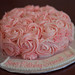 cake image, photo or clip art