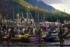 Ketchikan Marina (h_roach) Tags: travel water alaska marina boats fishing dock masts soe ketchikan blueribbonwinner flickraward theunforgettablepictures