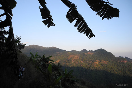 Jungle trek near Chiang Mai