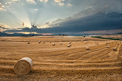 Hay balls (Nick-K (Nikos Koutoulas)) Tags: light sunset summer sun nature field clouds landscape greek nikon ray balls nikos greece hay f28  ellada 2470mm    kozani   d700        koutoulas