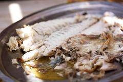 fish @ irini's cafe
