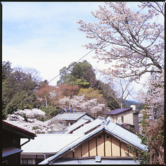 roof (TeraMeguri) Tags: roof japan cherryblossoms settlement yoshino zenzabronicas2