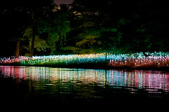 Sea of Lights (pheαnix) Tags: 35mm minolta pennsylvania f14 g sony rs longwoodgardens a77 kennettsquare thegalaxy ringexcellence ruby5