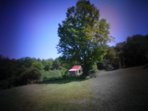 blue tree barn pinhole pinwide