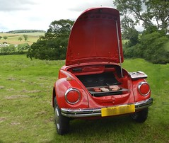new vw  bbq (*LINNY *) Tags: red car vw volkswagen beetle bbq