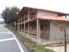 P4290066