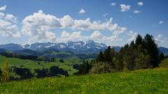 Blick auf Sntis (Jolanda Donn) Tags: panorama schweiz panoramas alpen wandern aussichtspunkt sntis waldegg bergpanorama aussichten ausflugsziel kantonappenzell sonydslra700 wanderparadies schnuggenbock schweizertourismus waldeggteufenar