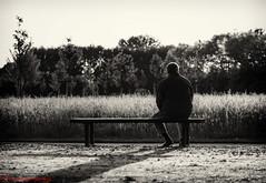 Sonntagabend... (Maximkaa) Tags: street old white man black field yoga sepia photography three fotografie alt natur feld wiese bank mann sonne weiss bume sonntag schwarz chillen mnster spielplatz sitzen entspannen relaxen weis joga mecklenbeck spielo