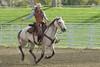 IMG_6761 (blackhawk32) Tags: horses horse cowboys cowboy shell wranglers wyoming cowgirl cowgirls rivercrossing wy wrangler horserunninginwater hideoutlodge