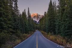 Cavell Lake (robertopastor) Tags: alberta amrica canada canadianrockiesmountain canad cavelllake fuji jasper montaasrocosas robertopastor viaje xt2 xf1655mm cavell lake