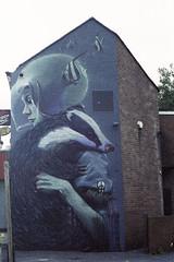 badger mural (pho-Tony) Tags: exaktatl500 exakta tl 500 slr gdr east germany m42 35mm ttl pentacon auto 1850 pentaconauto1850 f18 50mm ihagee west ihageewest kodakultra400 kodak ultra 400 colour negative film expired rollei digibase c41