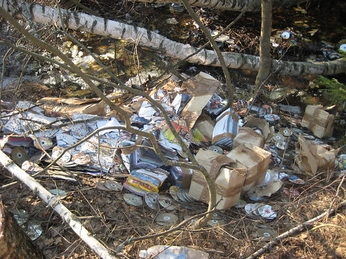 Завалили ручей мусором
