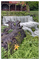 Hodgson Water Mill (Nikon66) Tags: mill waterfall nikon missouri d300 ozarkcounty hodgsonwatermill 1424mmf28nikkor copyright