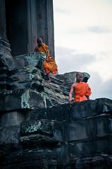 Youth Monks, Angkor Wat, Cambodia