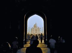 The Taj Mahal (Deb Jones1) Tags: travel people india love beauty 1 jones religion ngc taj tajmahal agra places explore 1001nights deb iconic wonders nationalgeographic indiaimages flickrduel best4gpin bestphoto4gpinaug2011 bestphoto4gpinsep2011 debjones1
