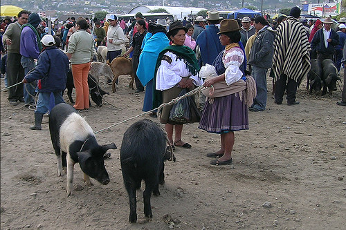 Otavalo - Chatting Women