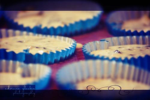 choc monte cupcakes raw