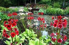 Monteviot Water Garden (Active Gate) Tags: gardens monteviot daysoutinthescottishborders
