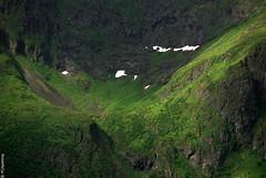 - lofoten - norway - 05 (hors-saison) Tags: wild norway landscape  paysage lofoten norvege sauvage   a