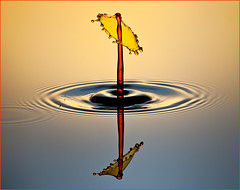 Yellow and Red (Scottypics034) Tags: reflection wet water beautiful reflections scott photo drops nikon waterdrop vivid drop drip setup drips splash capture striking reflexions finest beautifulphoto strobist d700 scottsimons strobistwaterdrop strobistwaterdropd700 waterdrops2012