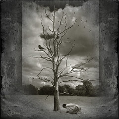 The dead tree? (Mara ~earth light~) Tags: tree texture nature photoshop prayer creativecommons meditation healing buddism  deepavali ourtime soulscapes artdigital idream contemporaryartsociety fantasticnature innamoramento alberoefoglia romanceintheair memoriesbook mara~earthlight~ lovelymotherearth sweetfreedom truthandillusion