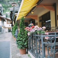 cafe (joytrip*) Tags: film schweiz switzerland bokeh swiss zermatt 75mm   nikkorp75mmf28 zenzabronicas2   permanentlyneutralizedstate