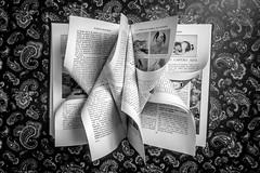 Let's go read a book? (davidson.santiago77) Tags: blackwhite pretoebranco livro book leiaumlivro read greatphotographers