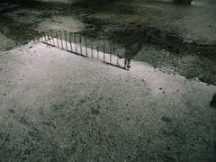 Reflejo (agridulce?) Tags: reflection reflejo rainy lluvioso rain lluvia dark oscuro calm calmado greenish verdoso verde malla pavement pavimento water agua cuenca ecuador rocks piedras