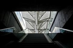 Escaleras (Jose A. Bejarano) Tags: portugal station architecture stairs arquitectura lisboa lisbon platform calatrava estacion oriente escaleras transporte anden transpor