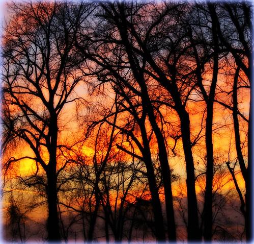 Sky Ablazed