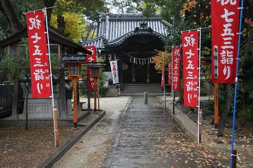 雨の中の神社/Jinja shrine