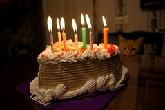 Cake Kitty (erika-marie) Tags: birthday ice cake cat dessert happy fire candles cream kitty flame carvel