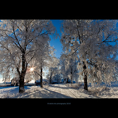 allé (stella-mia) Tags: road blue winter sun white snow norway frost lensflare vei snø snowroad 2470mm canon5dmkii veslelien snøvei annakrømcke