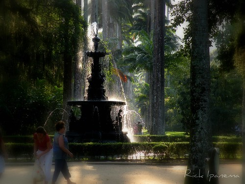 Thumbnail from Rio de Janeiro Botanical Garden
