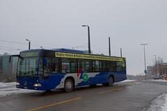 20101203_090441