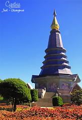 Jedi - Chiangmai (4)