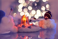 Baby, it's cold outside (Danielle Pearce) Tags: blue dog snow hot reflection men ice fire nikon purple bokeh roast smores marshmellow smore d5000