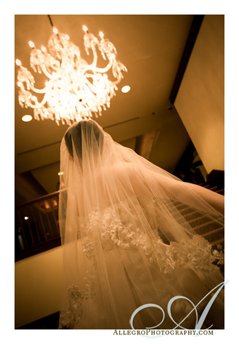 boston-downtown-hyatt-regency-wedding- bride's veil and grand staircase chandelier