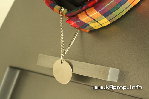 K9 Tartan Collar and Dog Tag