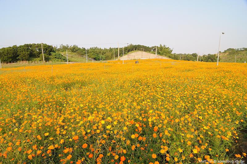 孔宅綠園 (2).jpg