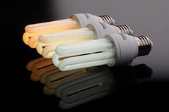 Three energy saving light bulbs
