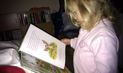 Reading The Gruffalo