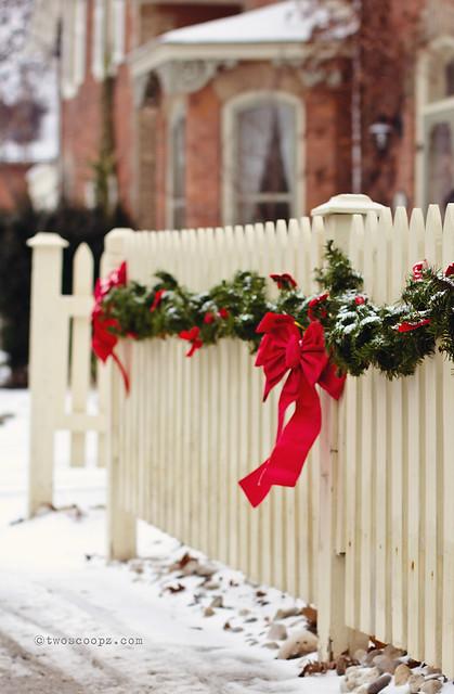 festive fence 344/365