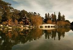 Pavilion of the Three Friends (Andy Kennelly) Tags: california bridge trees friends fall water colors architecture reflections garden three library huntington chinese relaxing peaceful calm pavilion serene pasadena finallyfall andykennelly