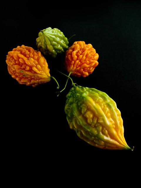 IMG_0879  Mini Bitter Gourd