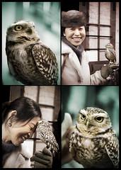 Noriko with an owl