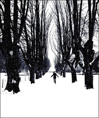 Yes !! it`s winter (Odyssevs) Tags: trees bw snow girl norway olympus avenue tnsberg sigma1020mm mywinner